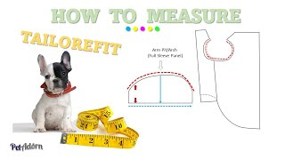 How to Measure Your Dog For Clothing – 11 Steps