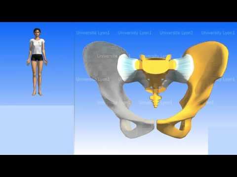 Perché osteocondrosi cervicale aumenta la pressione