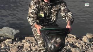 Рыбалка на сорочинского водохранилища