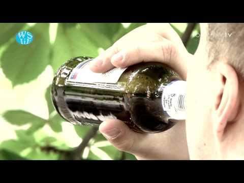 Leczenie alkoholizmu w cenach Volgograd