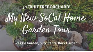 50 Fruit Trees! My New SoCal Home Garden Tour for 2019, Veggie Garden, Succulents, Rock Garden