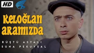 Keloğlan Aramızda - HD Türk Filmi