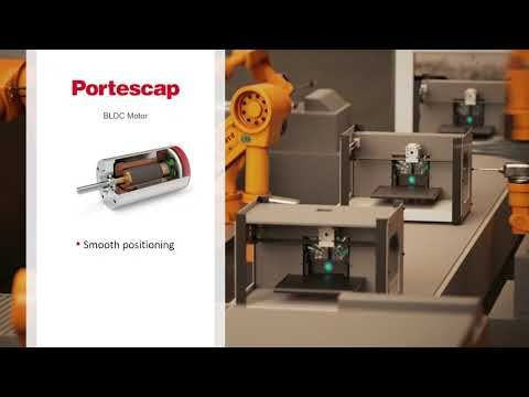 Portescap Dmm Servo Motor