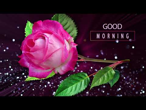 🌺Good Morning🌺Whatsapp, Wishes, Quotes, Message, Greetings