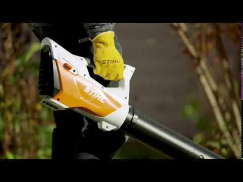 Stihl BGA 45 in Purvis, Mississippi - Video 2