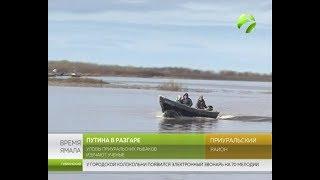 Уловы приуральских рыбаков изучают ученые