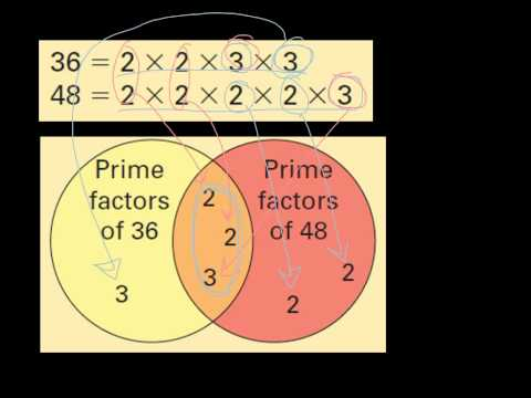 Lcm And Gcf By Prime Factorization And Venn Diagram