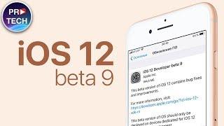 Обзор iOS 12 beta 9 (iOS 12 Public Beta 7). Дата релиза iOS 12 Final