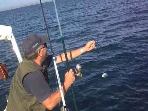 Per pescare di un piccolo pesce con ganci per comprare