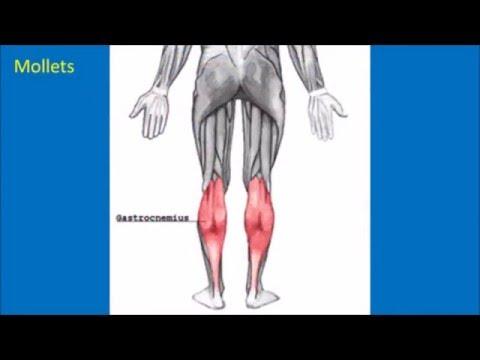 Affermir les muscles du fond pelvien pour la grossesse