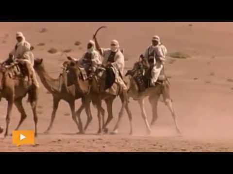 وثائقي   ما هي «الوهابية» ومن مؤسسها وما خطورتها