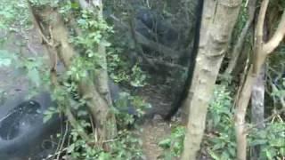 preview picture of video '20090704 Michel Mega Paintball Saint Louis Réunion 974'