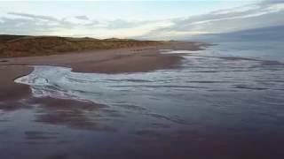 Fiona Apple - Love Ridden (Blackdog Beach) with Lyrics (CC)