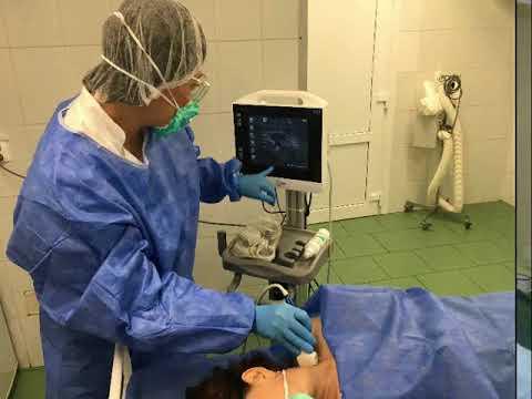 Поздравление с Днём анестезиолога от Минаевой Ольги Альбертовны