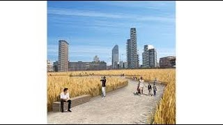 Guido Folonari - The Wheatfield - L