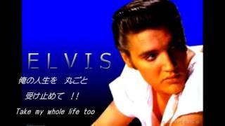 白秋6. I Can't Help Fall In Love 好きにならずには、いられない Song By Elvis Presley