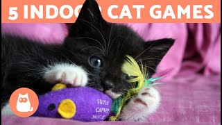 5 GAMES to ENTERTAIN Your CAT at HOME 🐱