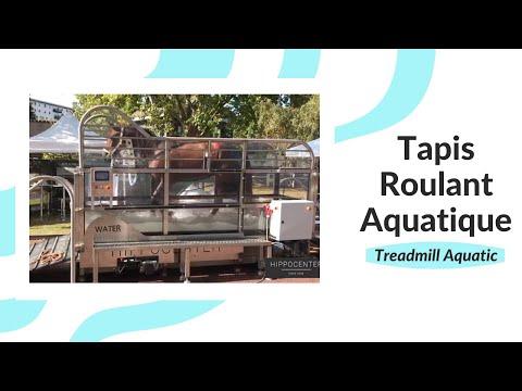 Tapis roulant aquatique Protrainer Water - HIPPOCENTER