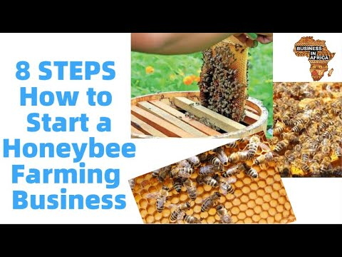 , title : '8 STEPS How to Start a Honeybee Farming (Beekeeping) Business | best small business ideas in africa