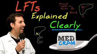 Liver Function Tests (LFTs) Explained Clearly by MedCram.com