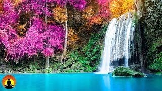 Study Music, Concentration Music, Focus Music, Meditation, Relax Music, Alpha Waves, Study, ☯3696