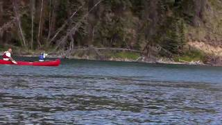 Discovering the Yukon River - Yukon Territory, Canada