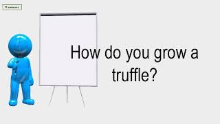 How Do You Grow A Truffle?