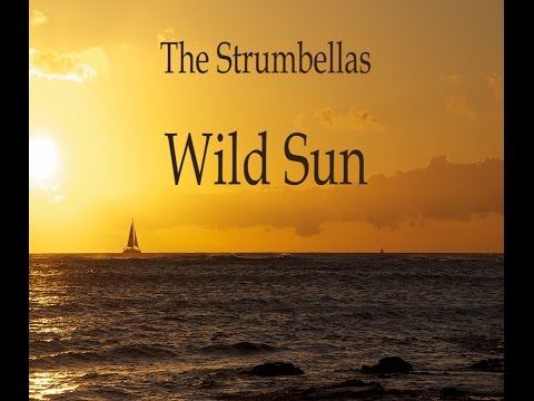 The Strumbellas - Wild Sun (LYRICS)