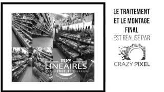 preview picture of video 'MFR Châteaubriant Projet Photo Pédagogique CRAZY PIXEL'