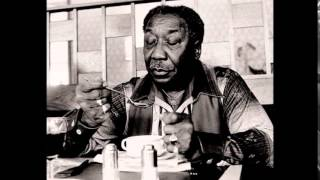 Muddy Waters ~ Live At Mr. Kelly's (Part 1 Electric Harmonica Chicago Blues 1971)