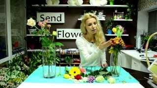 Как выбрать свежие цветы. Часть 2. Тюльпаны, герберы и др.
