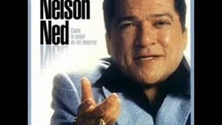 Nelson Ned 23 Exitos