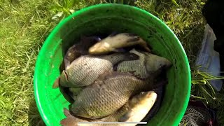 Платная рыбалка шатурский рыбхоз