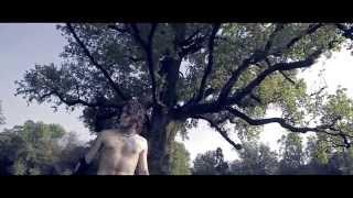 FUROR GALLICO - 'Song Of The Earth' official mp3