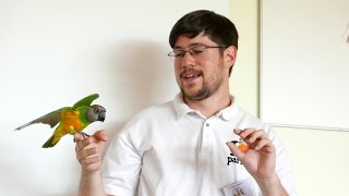 Germany - Parrot Training Seminar