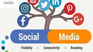 Digital Marketing Training Institue