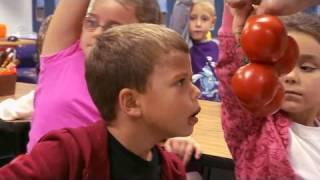 Potato or Tomato? - Jamie Oliver's Food Revolution   Promo Clip   On Air With Ryan Seacrest