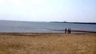 葛西海浜公園のイメージ