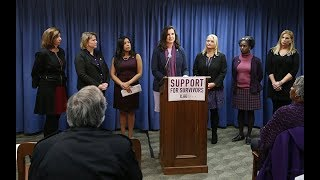 Task Force Introduces Bills to Support Survivors of Gender Violence