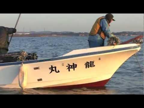 【海としごと】星のり店 その3