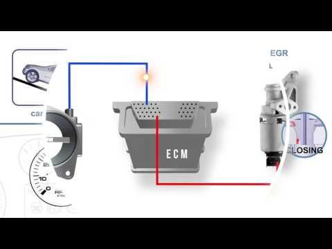 GM P1405 error (EGR) - смотреть онлайн на Hah Life