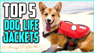 Top 5 Best Dog Life Jackets Review In 2020