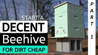 Starting A Beehive For Dirt Cheap & Setting Up Beehive For Success (PART 1)
