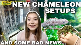 Two NEW Chameleon Enclosures + An Unfortunate Update...