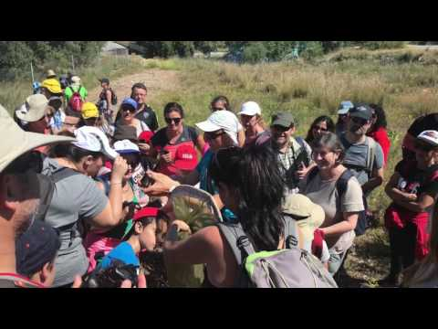 Taller de Sensibilización Ambiental. Iniciación a las mariposas en Gran Senda de Málaga