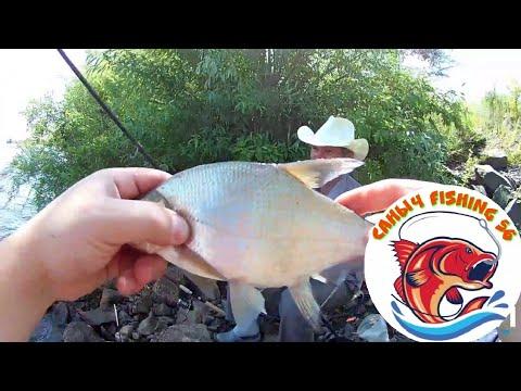 Рыбалка за лещём/ловля на пенопласт/рыбалка на пружины на донку/ловля на гидроперит/Fishing