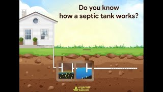 How A Septic Tank Works: Septic Tank Treatment | Organica Biotech