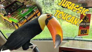 Toucan Explores Jurassic Park for the First Time!! (JP Explorer)