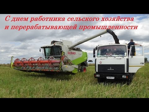 Поздравление с днем работников сельского хозяйства и перерабатывающей промышленности