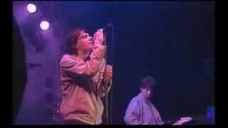The Charlatans - North Country Boy - V98